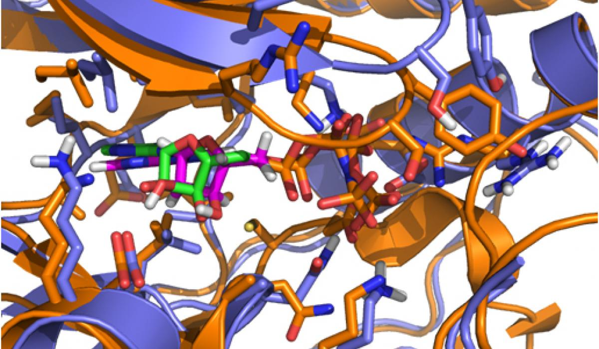 PfMAP2 crystal structure model.jpg